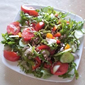 Salata verde, rucolla, castraveti, rosii, ceapa si seminte